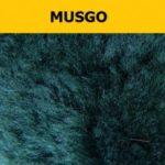 Musgo-legenda-300x300
