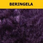 Beringela-legenda-250x250